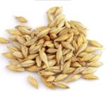 Сушилки для зерна – стоимость на сайте!