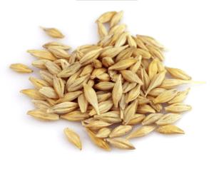 Сушилки для зерна