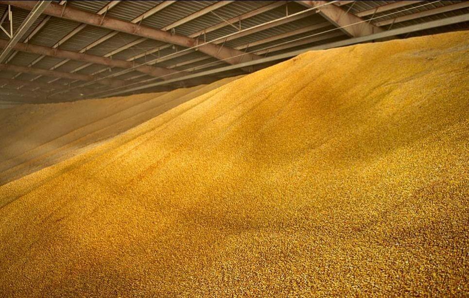 Зерносушилки конвейерного типа.