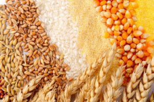 сушилки для зерновых культур